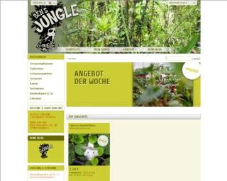 Bens-Jungle.de – Terrarienpflanzen