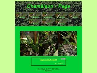 Chamäleon-Page